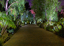 Colorful Walkway Lighting Design