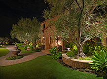 Better Outdoor Lighting Design