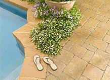 Poolside Paver Stones Tan Stone Sandals