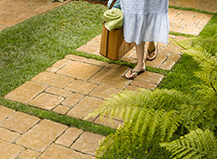 Grass And Paver Walkways