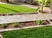 Paver Walkways And Planters