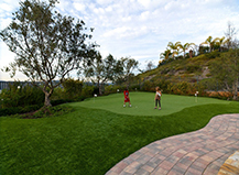 Synthetic Turf Backyard Putting Green