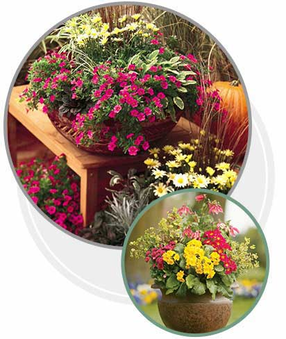 Outdoor Living Products Parnter Armstrong Garden Centers Systempavers