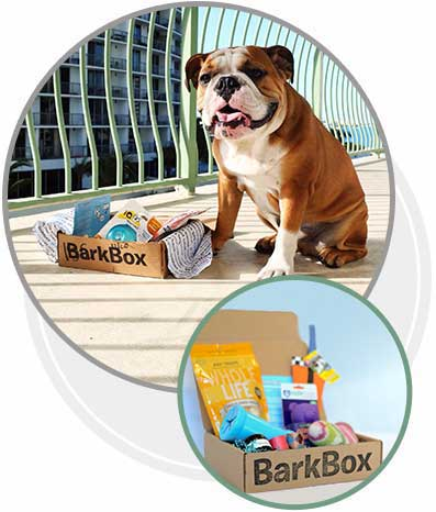 Barkbox Discount Coupon