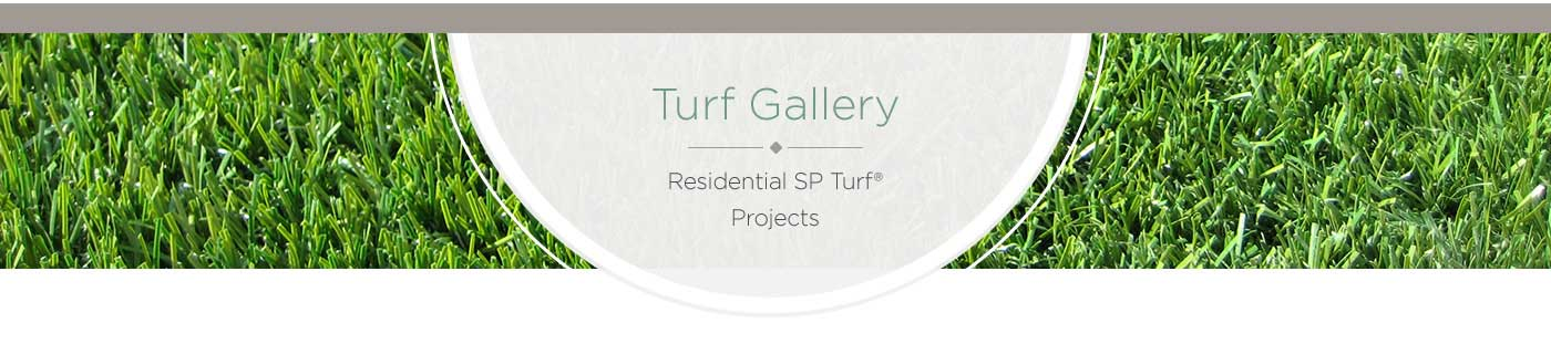 long-lasting sp turf