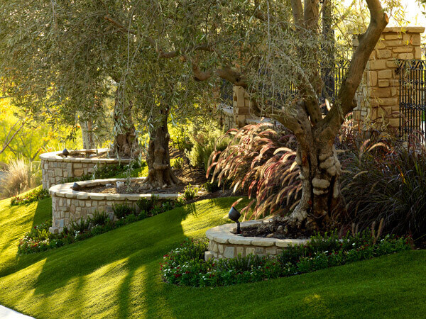 To avoid using extra resources on your lawn, try promoting an eco-friendly landscape to benefit the environment as well as the aesthetics of your yard.