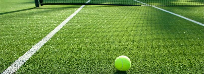 The Growing Popularity of Artificial Turf