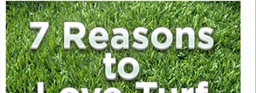7 Reasons to Love SP Turf