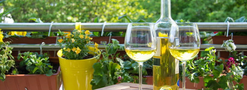 Myth or Fact: Real Men Drink White Wine