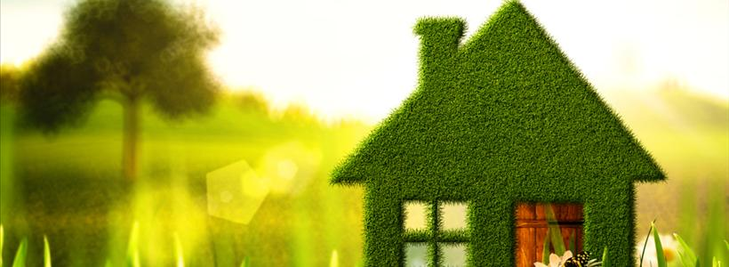 3 Ways to go Green at Home