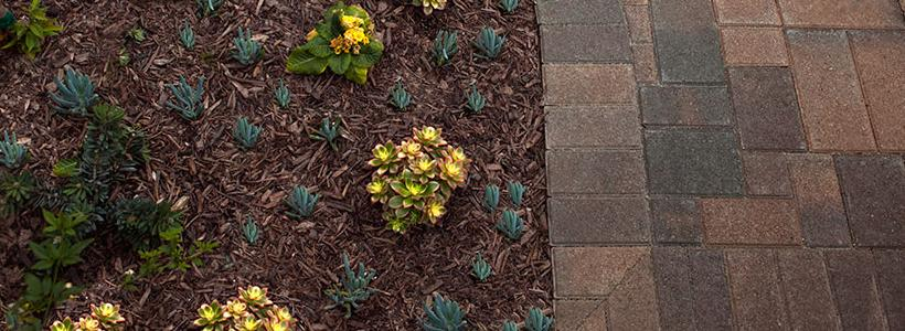 How to seamlessly integrate your softscape and hardscape designs