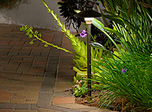 Planter Lighting Design