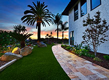 Backyard Turf With An Outdoor Walkway