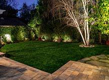 Ambient Backyard Landscape Lighting Design