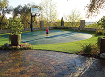 Synthetic Backyard Turf And Basketball Court
