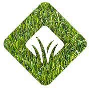 Quality artificial grass choices