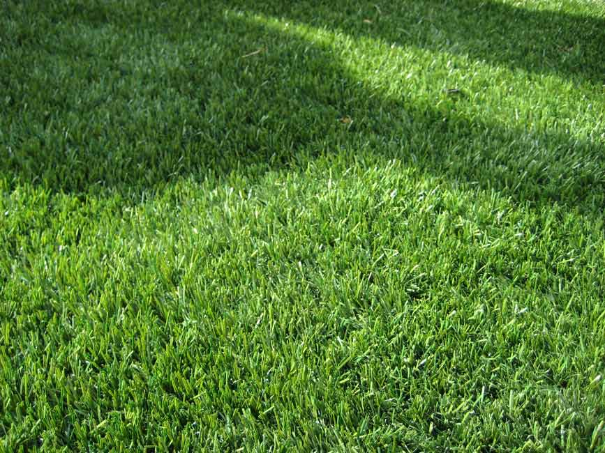 Preparing Your Yard for Artificial Turf